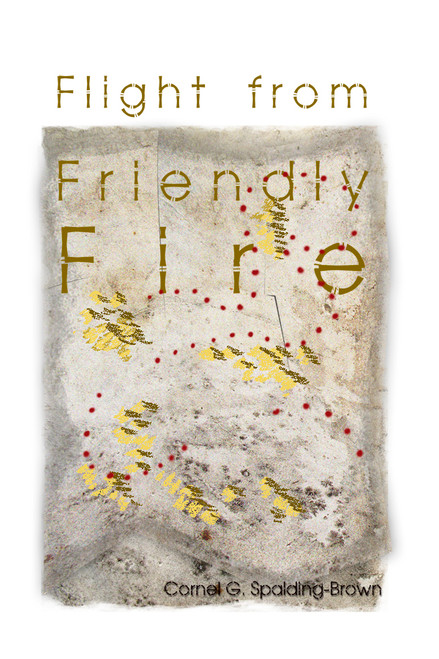 Flight from Friendly Fire - eBook