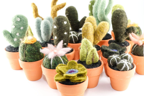 Miniature Felted Cactus in Terracotta Pot (Choose Your Needle Felted Succulent)