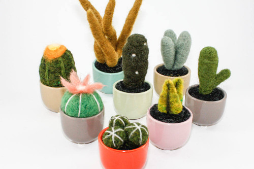 Miniature Felted Cactus in Colorful Ceramic Pot (Choose Your Needle Felted Succulent)