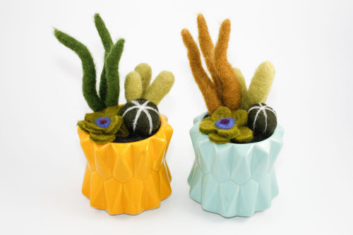 Needle Felted Cactus Garden in Geometric Planter (Aqua or Yellow)