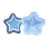 Star Shaker UV Resin  Silicone Mold