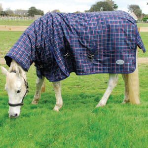 Rhinegold Alaska Heavyweight Outdoor Turnout Rug - Navy/Red Check