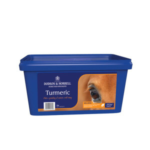 Dodson & Horrell Turmeric Supplement - 2kg