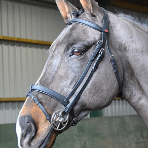 John Whitaker Ready To Ride Snaffle Bridle - Brown