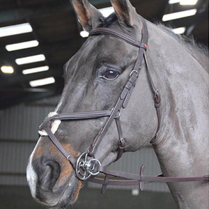 John Whitaker Ready to Ride Mexican Bridle - Brown