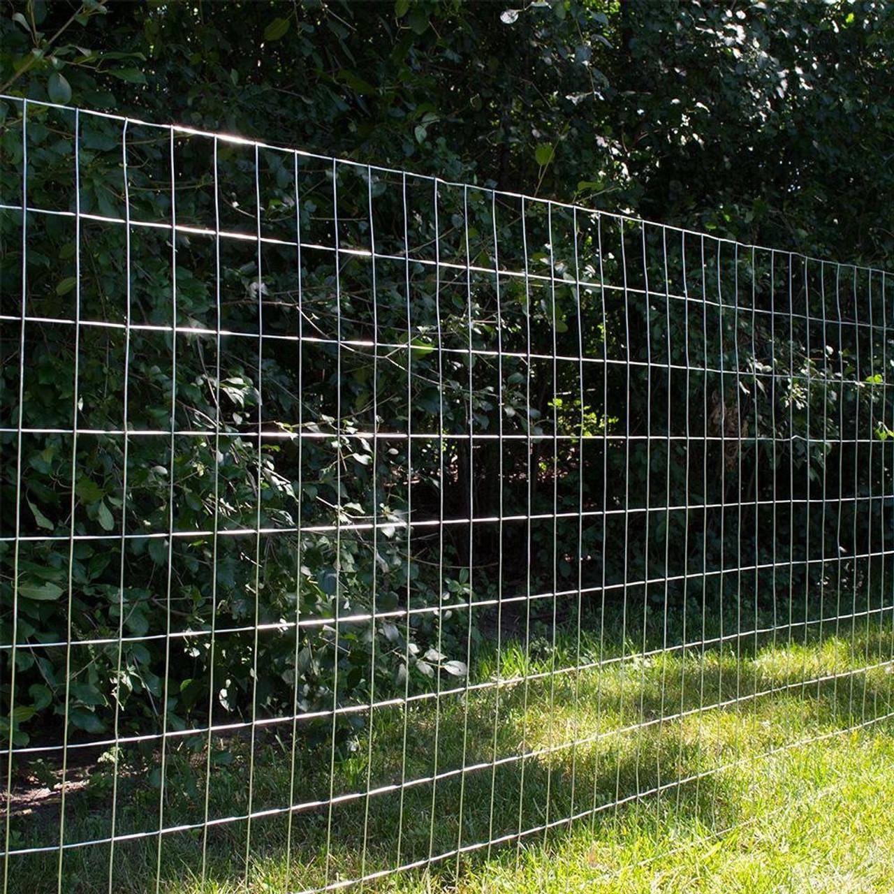 12.5 Gauge Galvanized Welded Wire 2\