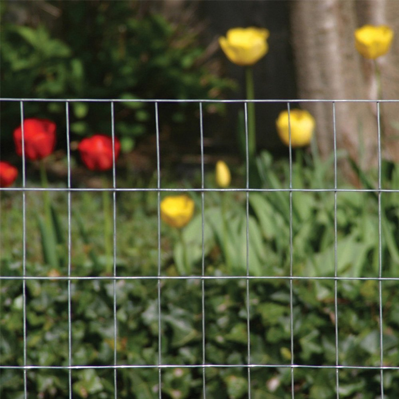 2x4 welded wire fence. Modren Wire 2x4 Welded Wire Fence 125 Gauge Galvanized 2  For Welded Wire Fence O