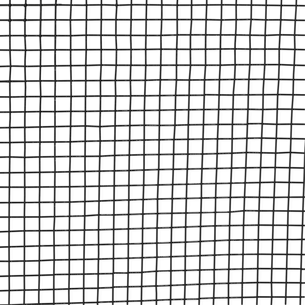 16 Gauge Black Vinyl Coated Welded Wire Mesh Size 0.5 inch by 0.5 ...
