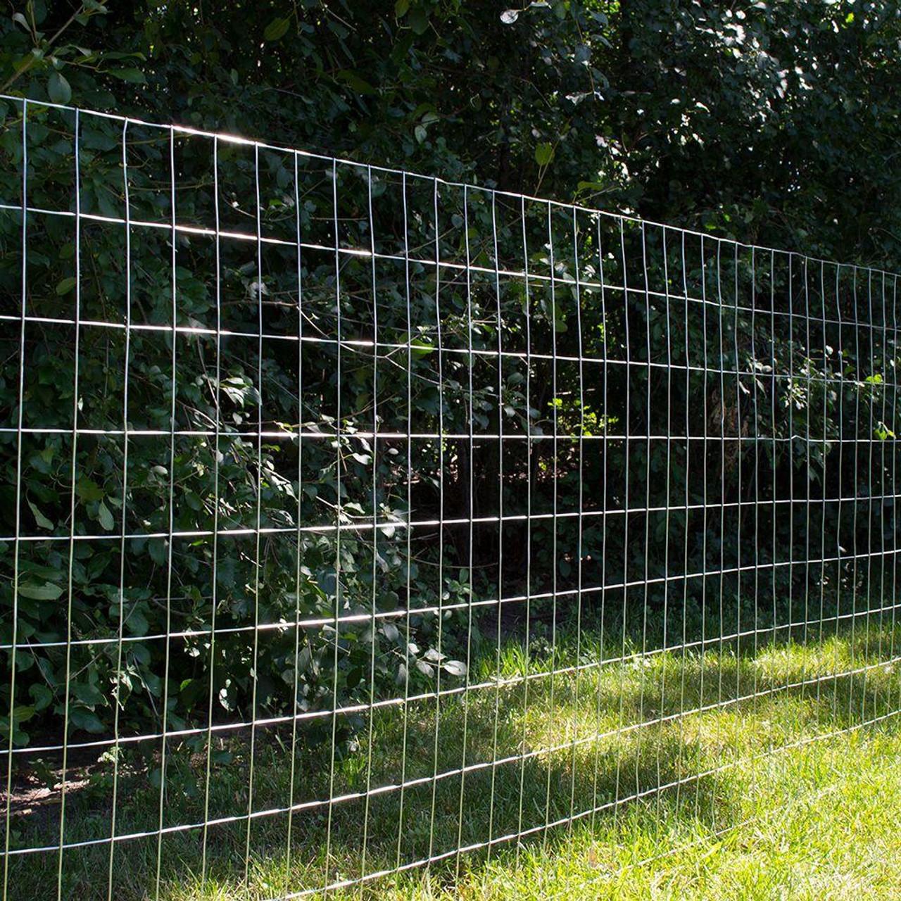 14 Gauge Galvanized Welded Wire Mesh 2 inch x 4 inch - FencerWire