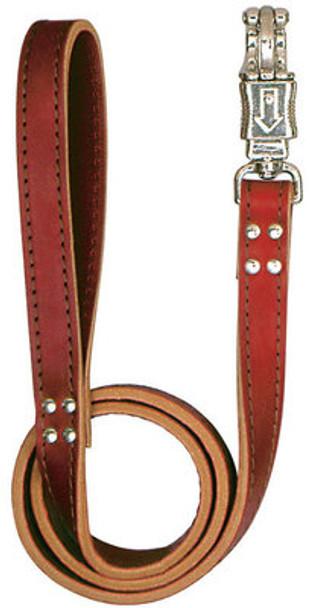 Latigo Leather Leads, 4'