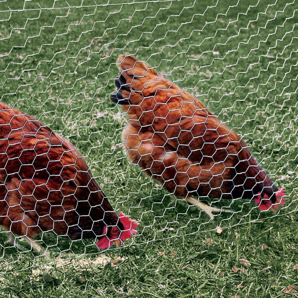 """20 Gauge Galvanized Poultry Netting Mesh Size 1"""""""