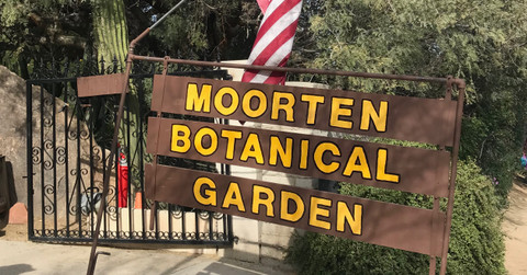 Must See In Palm Springs: The Moorten Botanical Garden