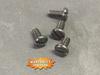 Air valve screws, New.  Package of 10.