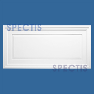 CP2903 Rectangle Ceiling Panel 23 3/4 x 47 3/4