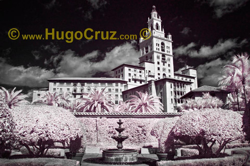 """""""Biltmore View"""" ● Infrared Photography"""