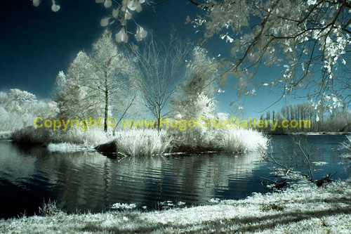 """Alice in Winterland"" ● Infrared Photography"