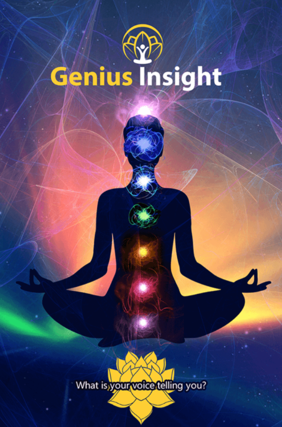 Genius Insight  Training - Video Training, E-Mastery Guide and Spiral Bound Book
