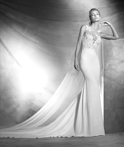 Atelier Pronovias Wedding Dress Vicenta