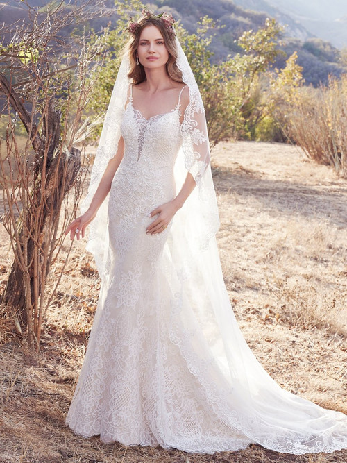 Plus Size Wedding Dresses Fayetteville NC Blush Bridal - Plus Size Blush Wedding Dresses