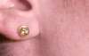 ASKJA Earrings in Yellow Gold with Mixed Color Diamond Pavé