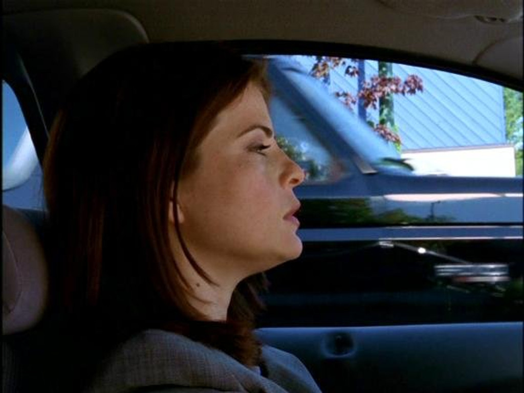 Road Rage Starring Yasmine Bleeth