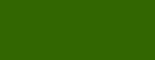 Modern Mama