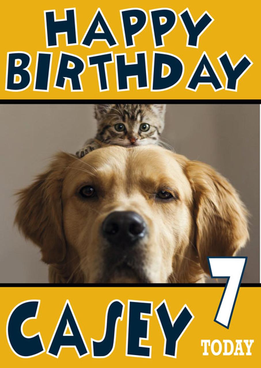 Kitten On Top Of Labrador Funny Birthday Card Celebrity Facemasks