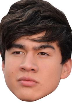 Calum Hood 5 Seconds Of Summer Music Star 2015 Celebrity Face Mask