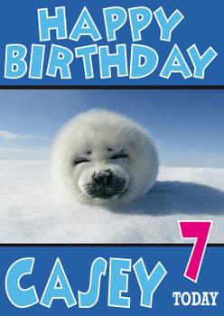 Baby Seal Funny Birthday Card