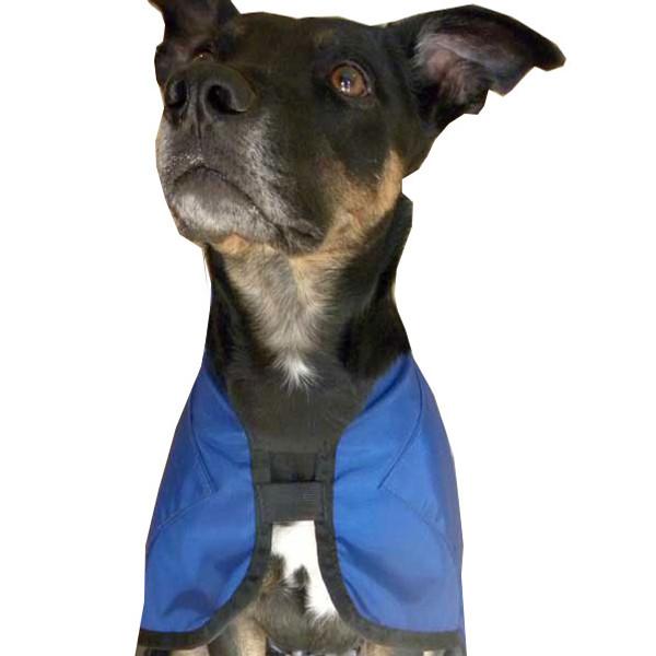 """Reggie Rx Wrap (""""Ice coat"""")"""
