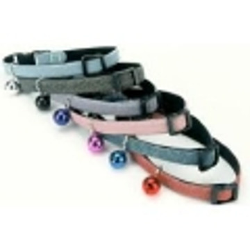 Collars, Harnesses, & Leads