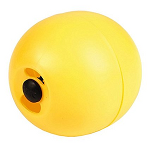 Chicken Feeding Ball