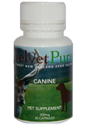 Canine Pet Supplement Capsules