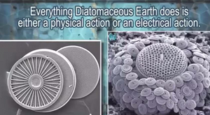 Diatomaceous Earth for Humans