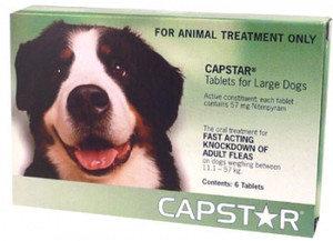 Capstar Flea Treatment for Large Dogs 11-57kg