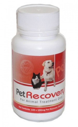 PetRecovery - 100 Capsules