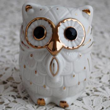 Money Box - Feng Shui Lucky Owl