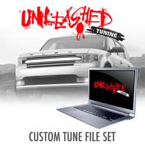 Ford Flex Custom Tunes