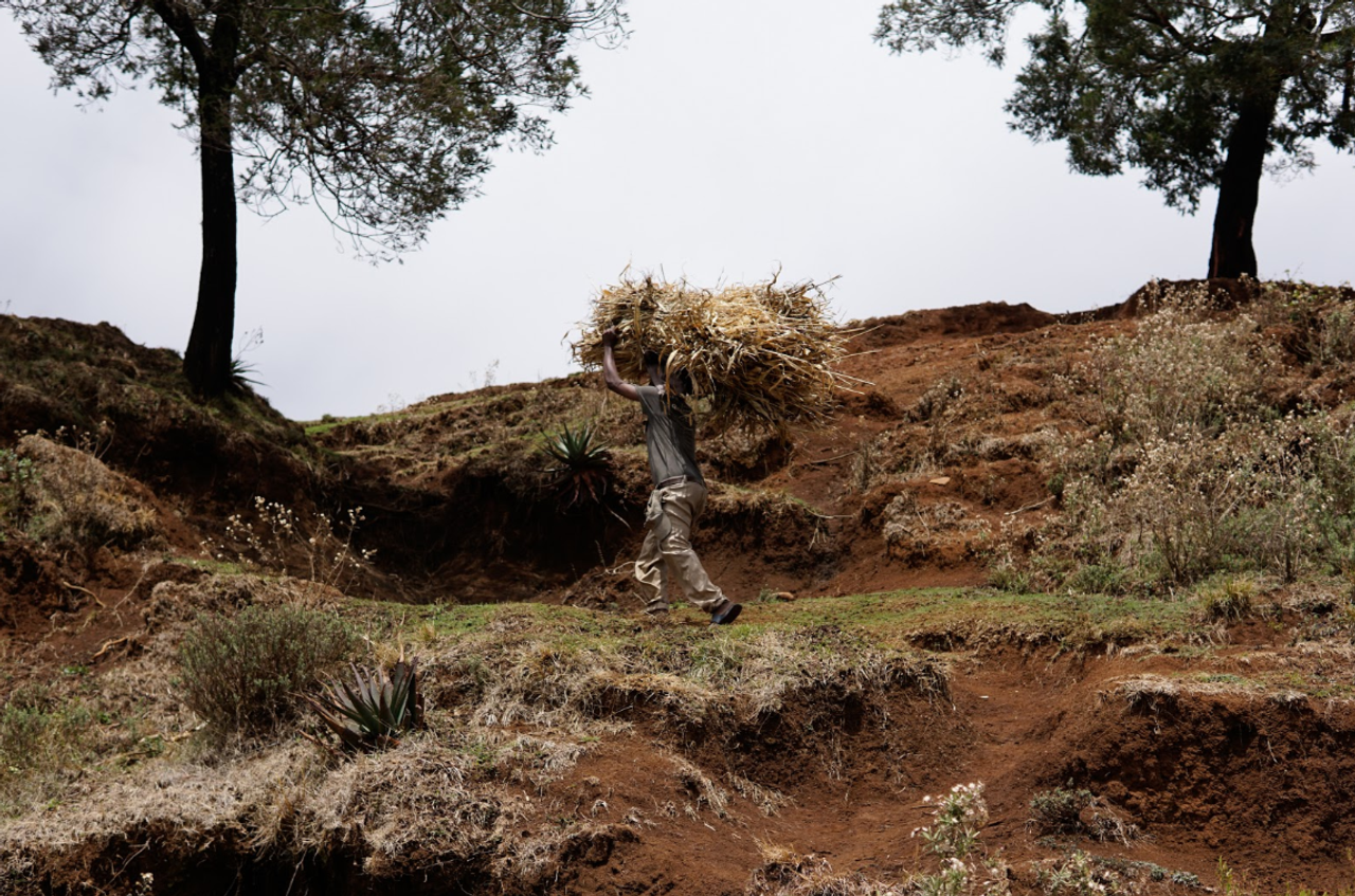 Ethiopia: A Week's Visit in Pictures