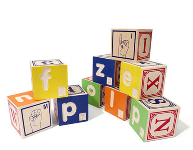 Braille & Sign Language Blocks