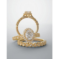 Beautiful & Romantic Halo Wedding Set