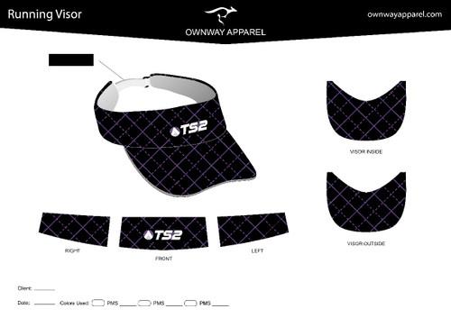TS2  running visor