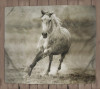 Galloping Horse Fleece Blanket