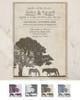 rustic horse farm equestrian wedding invite