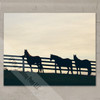 Horses at the Fence Fine Art Gallery Wrap Canvas