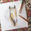 Original Watercolor Haflinger Horse Head Study Painting