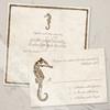 Seahorse Beach Wedding Invitation (25 pk)