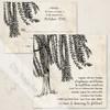 Willow Tree Wedding RSVP card (10 pk)