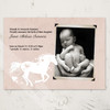 Sweet Heart Horse Newborn Baby Birth Announcement in pink or blue