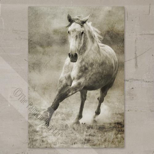 Rustic Galloping Dappled Grey Horse Gallery Wrap Canvas Art
